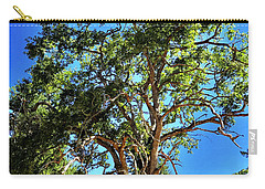 Carry-all Pouch featuring the photograph The Turtleback Tree by Lorraine Devon Wilke