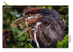 The Twins Carry-all Pouch by Cyndy Doty