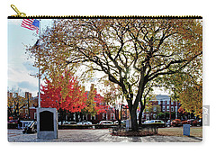 The Washington Elm Carry-all Pouch