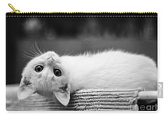 The White Kitten Carry-all Pouch