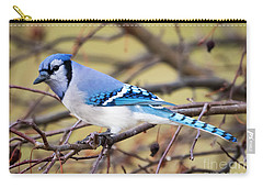 The Winter Blue Jay  Carry-all Pouch by Ricky L Jones