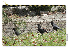 Thirsty Trio Of Ravens Carry-all Pouch by Belinda Lee