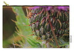 Carry-all Pouch featuring the photograph Thistle  by Ann E Robson