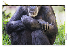 Thoughtful Chimpanzee  Carry-all Pouch by Stephanie Hayes
