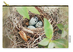 Three Bird Eggs Carry-all Pouch by Linda Olsen