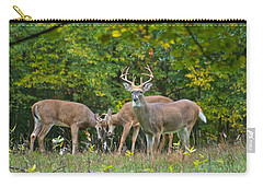 Three Bucks_0054_4463 Carry-all Pouch