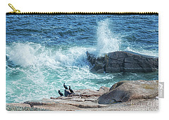 Three Cormorants At Monument Cove, Acadia National Park Carry-all Pouch