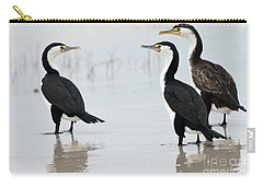 Three Cormorants Carry-all Pouch by Werner Padarin