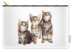 Three Curious Tabby Kittens Together On White Carry-all Pouch