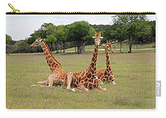 Three Giraffe At Fossil Rim Carry-all Pouch by Jayne Wilson