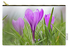 Three Glorious Spring Crocuses Carry-all Pouch by Betty Denise