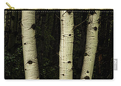 Carry-all Pouch featuring the photograph Three Pillars Of The Forest by James BO Insogna