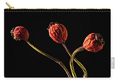 Three Rose Hips Carry-all Pouch