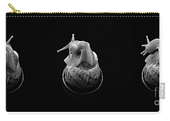Three Snails Carry-all Pouch