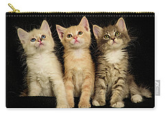 Three Wee Kittens Carry-all Pouch