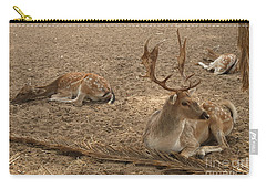 Three Deer Resting Carry-all Pouch