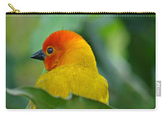 Through A Child's Eyes - Close Up Yellow And Orange Bird 2 Carry-all Pouch by Exploramum Exploramum