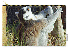 Through Christ Carry-all Pouch