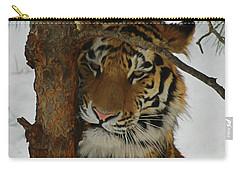Tiger 2 Da Carry-all Pouch by Ernie Echols