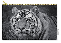 Tiger In The Grass Carry-all Pouch by Darcy Michaelchuk