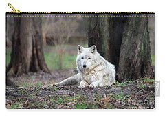Carry-all Pouch featuring the photograph Timber Wolf by Andrea Silies