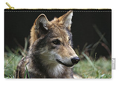 Timber Wolf Canis Lupus Portrait Carry-all Pouch