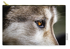 Carry-all Pouch featuring the photograph Timber Wolf Stare by Teri Virbickis