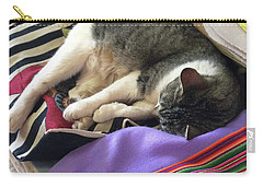 Time For A Siesta Carry-all Pouch