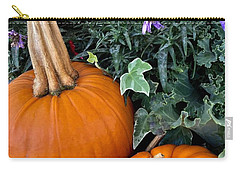 Time For Pumpkins In The Flower Beds Carry-all Pouch by Patricia E Sundik