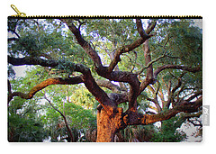 Time To Climb Carry-all Pouch by Faith Williams