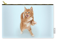 Tiny Tiger Carry-all Pouch