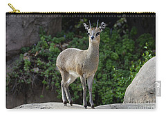 Carry-all Pouch featuring the photograph Tip Toe On The Rock by Debby Pueschel