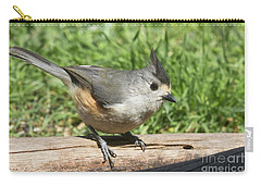 Titmouse Close Up Carry-all Pouch