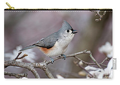 Carry-all Pouch featuring the photograph Titmouse Song - D010023 by Daniel Dempster