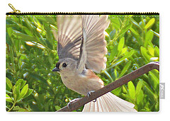 Titmouse Takeoff Carry-all Pouch