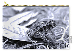 Toad Carefully Carry-all Pouch by D Renee Wilson