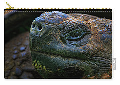 Tortoise 2 Carry-all Pouch