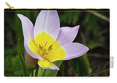 Touch Of Yellow Carry-all Pouch