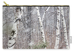 Transition, Spring Squall 3 - Carry-all Pouch