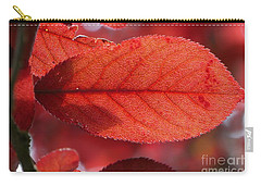 Carry-all Pouch featuring the photograph Transparence 23 by Jean Bernard Roussilhe