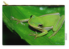 Tree Frog On Hibiscus Leaf Carry-all Pouch