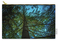 Tree Light Carry-all Pouch by Bruce Pritchett