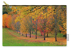 Tree Lined Path With Fall Foliage Carry-all Pouch