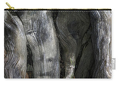 Carry-all Pouch featuring the photograph Tree Memories # 20 by Ed Hall