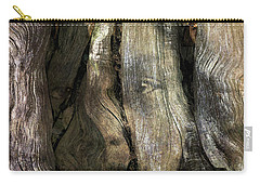 Carry-all Pouch featuring the photograph Tree Memories # 24 by Ed Hall