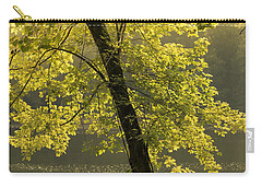 Carry-all Pouch featuring the photograph Tree Of Light by Shane Holsclaw