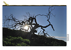 Carry-all Pouch featuring the photograph Tree Of Light - Sunshine Through Branches by Matt Harang