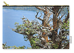 Carry-all Pouch featuring the photograph Tree Over Emerald Cove by Lynda Lehmann