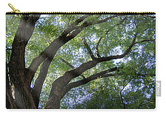 Tree Rays Carry-all Pouch