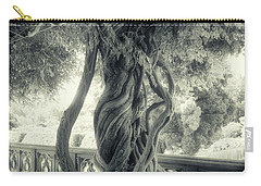 Tree Trunk Bw Series Y6693 Carry-all Pouch